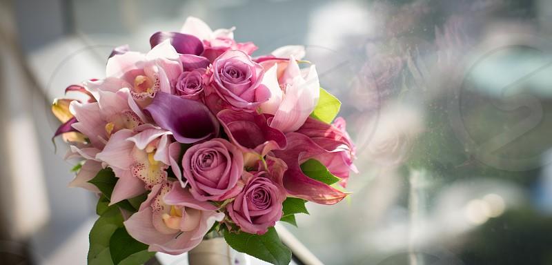purple rose bouquet photo