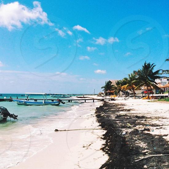 beach side view photo