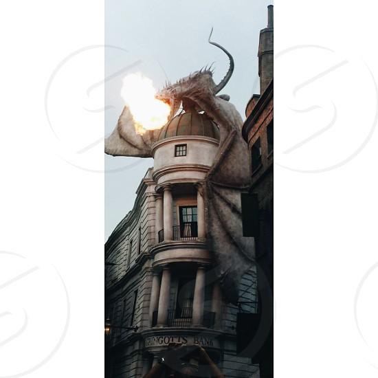 Universal Studios' Diagon Alley - Ukrainian Ironbelly dragon. photo