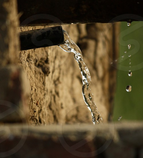Water source in a farm photo