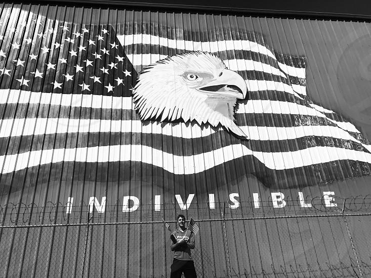AmericaflagUnitedStatesblack and white photo