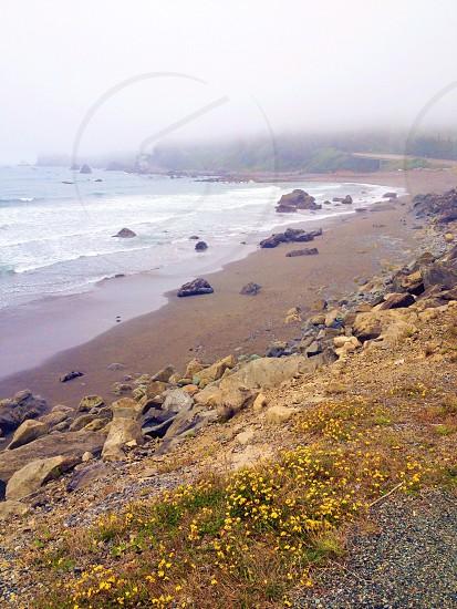 California beach pacific coast fog  photo
