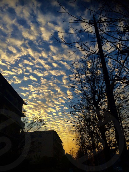 空が綺麗だったので撮りました photo