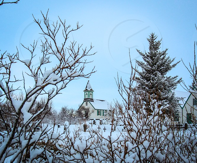 snow covered ground and trees near white and green buildings photo