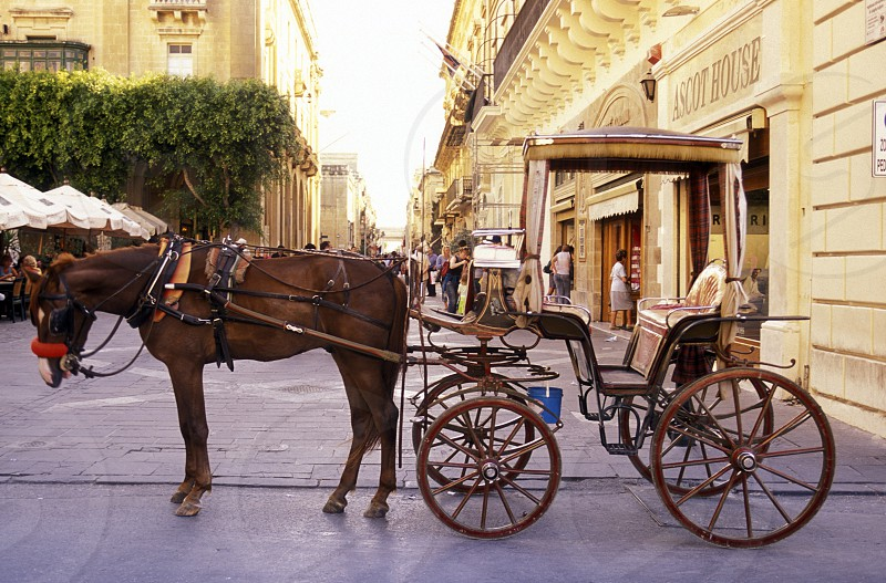 A Hosewagon in the Old Town of the city of Valletta on the Island of Malta in the Mediterranean Sea in Europe. photo