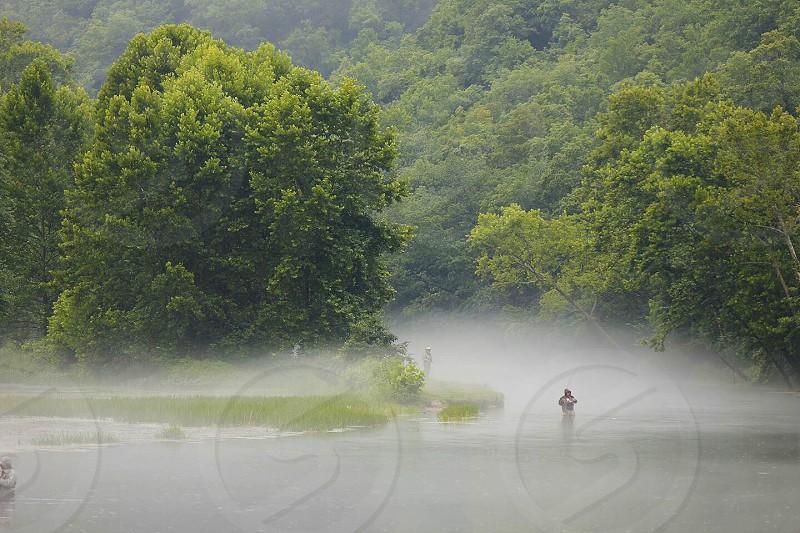 man walking on foggy forest photo