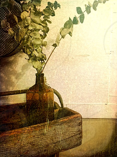Still life with a brown glass jug with dried flowers in a wooden garden carrier photo