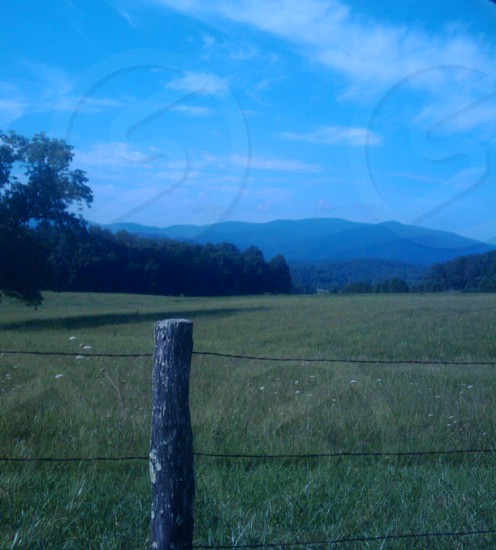 Tennessee Nature Green Grass Mountains Trees Cades Cove photo