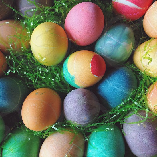 multicolored easter egss photo