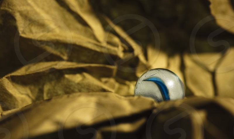 Lone cat's eye nested in a golden papery landscape photo