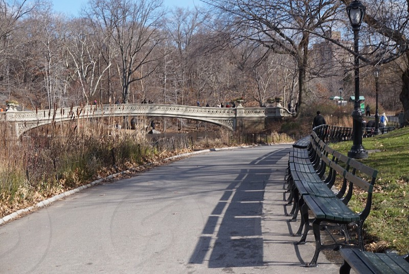Bridge in Central Park NYC photo