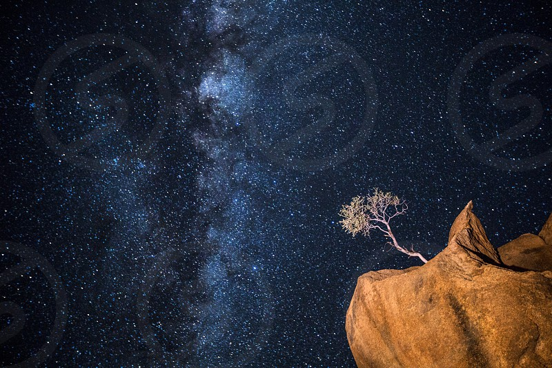 A tree grows out of an impossible position on a rock. Image portrays that nothing is impossible and the stars are the limit. Galaxy. Night. Tree. Astrophotography. Namibia. Concept. photo