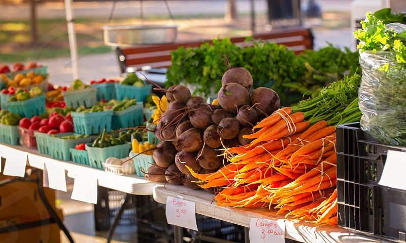 Bunches of carrots and beets at a community farmer's market photo