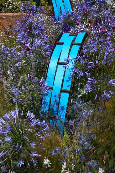 Concept garden at Hampton Court Flower Show 2013 photo