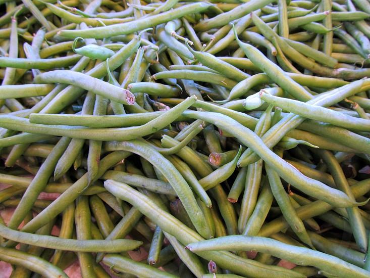 String beans photo