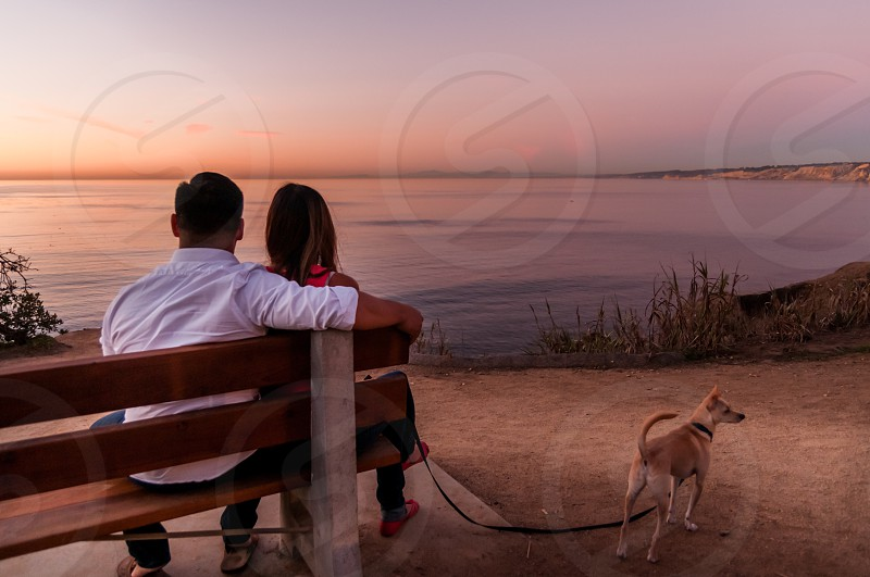 Park with a view of oceanbeautiful parkpark benchSan Diego parkcouple with dog at the parkdogcoupleSan Diego sunset sunset view at the park photo