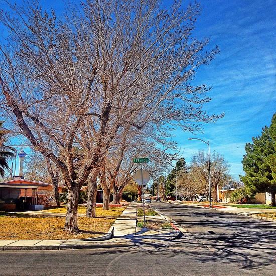 15th street photo