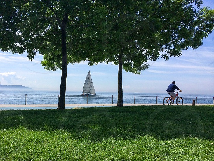 Sea bike cycle cycling biker coastline nature sailing boat seaside istanbul caddebostan sahil sport train training relax landscape bicycle travel free freedom relax sportive sport time exercise cardio sea sail spinnaker kite tree trees natural oxygen fit photo
