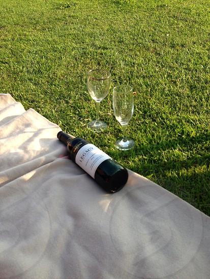 Wine friends picnic photo