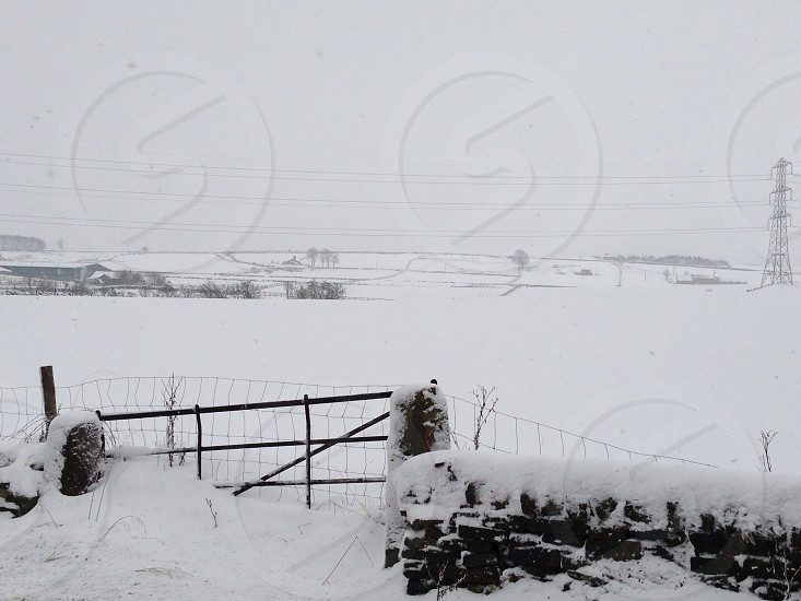 snowy field with steel electric post  photo