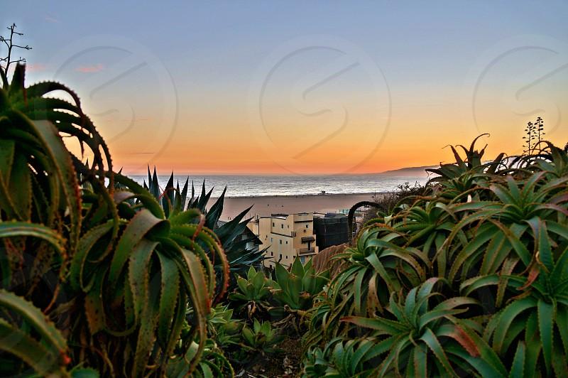 Sunset in Santa Monica Southern California photo