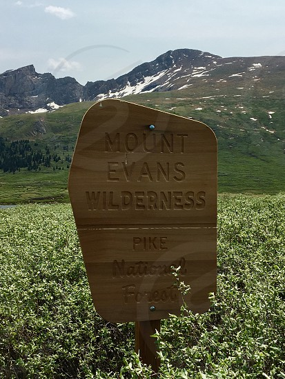 brown wooden signage with Mount Evans Wilderness Pike National Forest embossed text photo