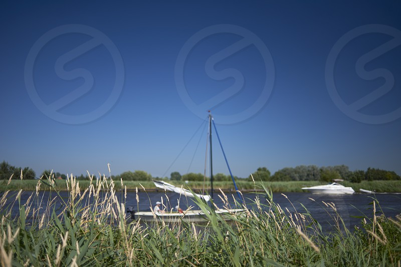 Small yachts and sailing ships sailing past along the river taken from the shore behind the high green grass photo