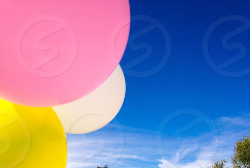 Sky Balloons 2014 photo