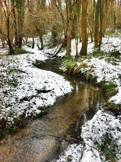 Stream in winter photo