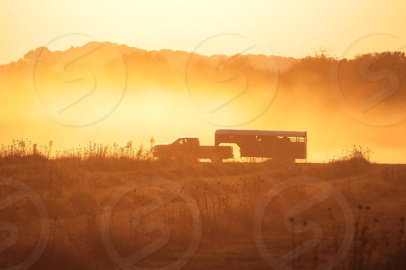 Dusty field at Sunset horses photo
