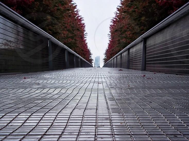 grey metal bridge  photo