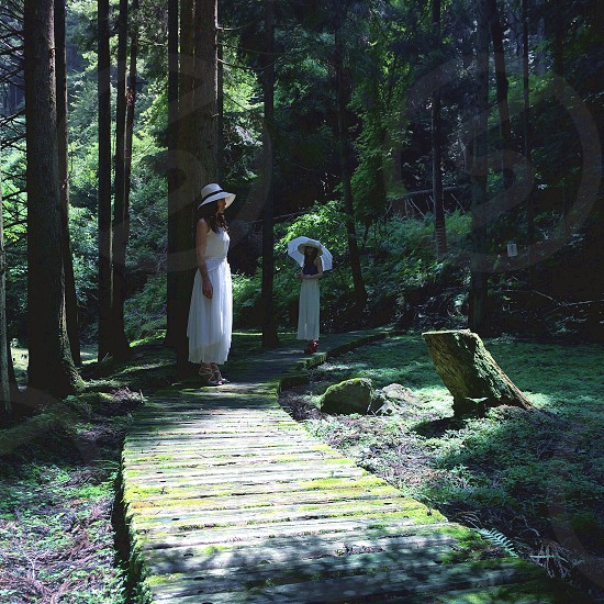 woman in white dress standing on pathway photo