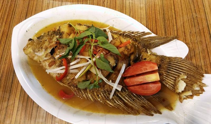 Gurami fish photo