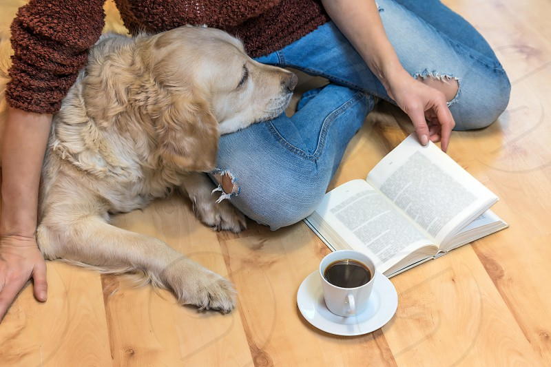 Aerial view of woman sitting down on the floor with Golden retriever dog. Open book and white cup of coffee are lying in front of them. The letters in the book are intentionally blurred. photo