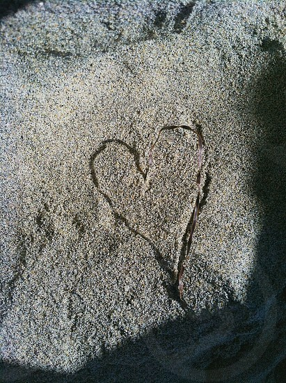 Skinny piece of green brown seaweed casting a shadow onto the sand making a perfect heart shape photo