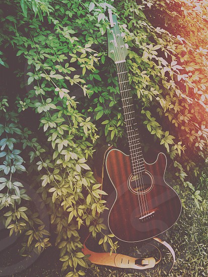 This is my acoustic Talman guitar photo