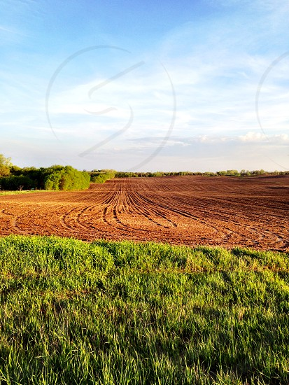 rows plowed into the field photo