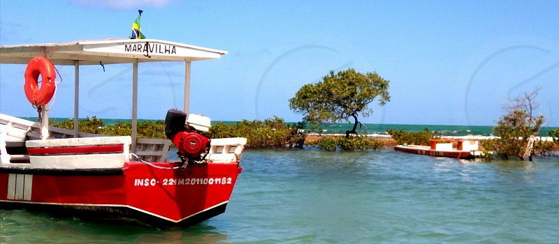 boat trees water sky leisure summer ttavel photo