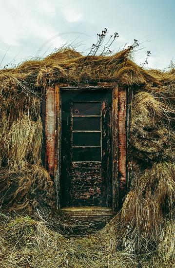 black and brown door photo