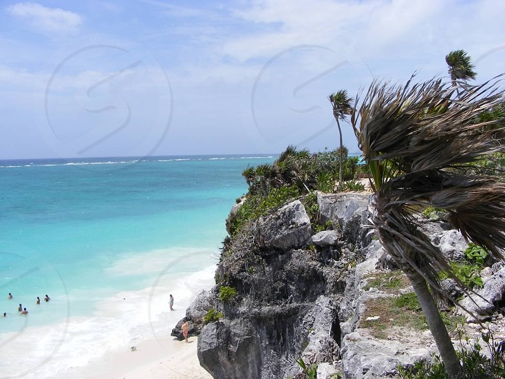 palm trees on gray green cliff overlooking blue ocean white sand shore photo