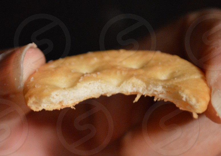 brown biscuit photo
