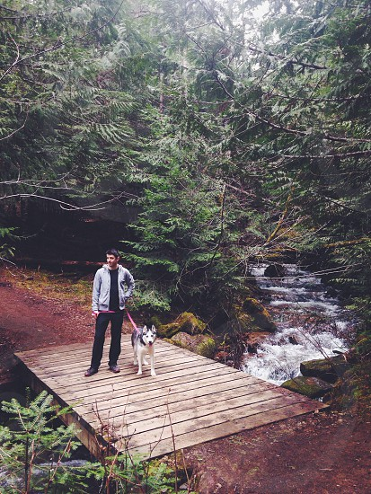 person standing in forest with dog photo
