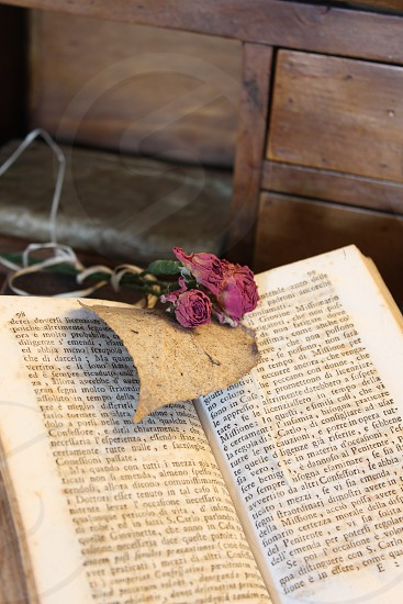Vintage desk old book and pink roses photo
