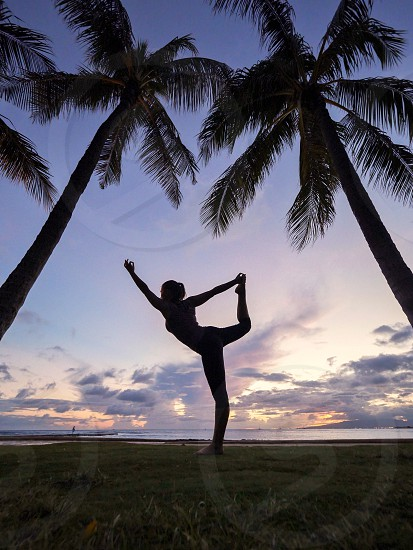 Fitness yoga pose on the beach park in Hawaii between palm trees  photo