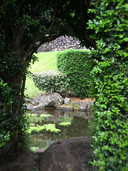 Botanical gardens photo
