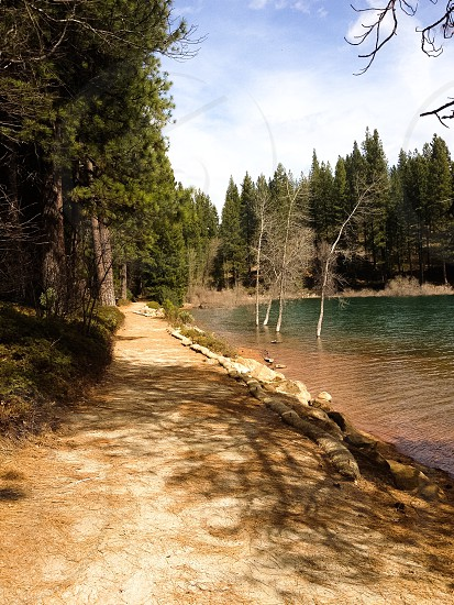 Nature happiness happy natural earth outside hike Sly Park Lake Jenkinson sunny daytime peaceful  photo