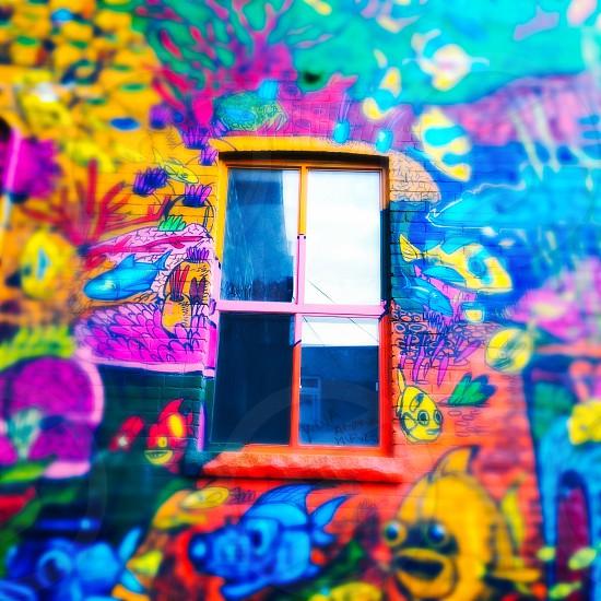 Outdoor day square filter colour colourful vivid vibrant bright multi-colour multi-coloured art street art Graffiti cartoon animation warehouse brick brickwork windows industrial graffiti alley west Toronto Toronto Ontario Canada North America tourist tourism travel wanderlust window glass photo