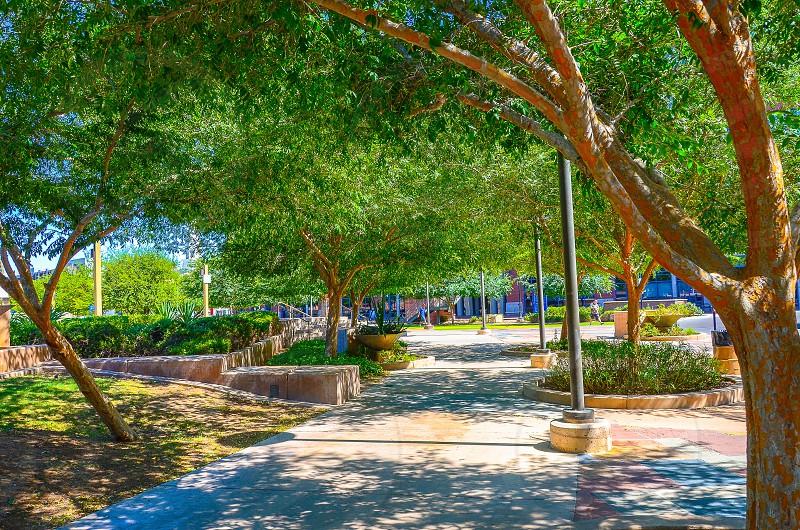 A stroll through a park in Tempe photo
