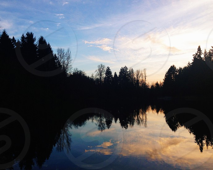 Reflection.  photo