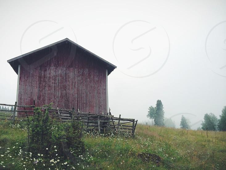 foggy barn and surroundings photo